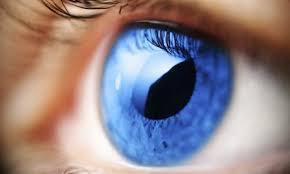 Попередити сліпоту цілком можливо