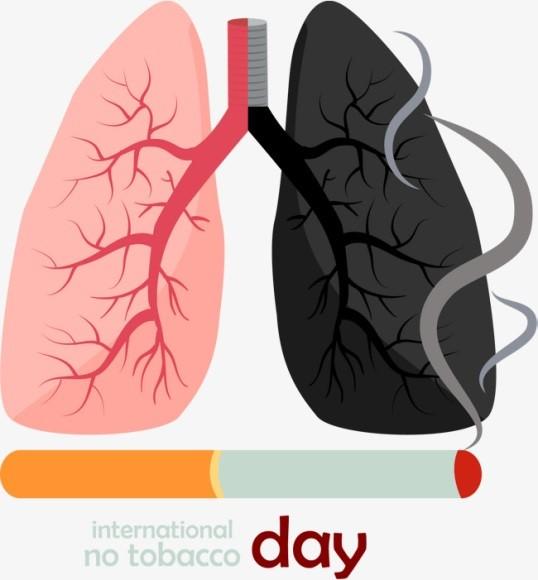 Як тютюн загрожує здоров'ю легень